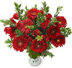 5 adet kirmizi gül 5 adet gerbera aranjmani  Giresun kaliteli taze ve ucuz çiçekler