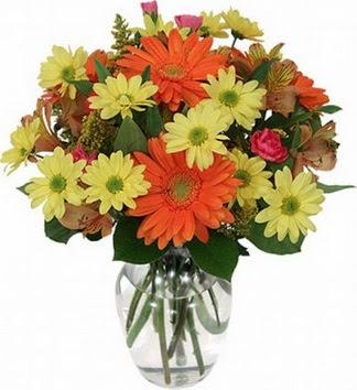 Giresun hediye çiçek yolla  vazo içerisinde karışık mevsim çiçekleri