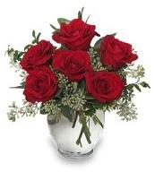Vazo içerisinde 5 adet kırmızı gül  Giresun güvenli kaliteli hızlı çiçek
