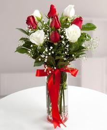 5 kırmızı 4 beyaz gül vazoda  Giresun çiçekçi telefonları