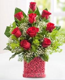 Cam içerisinde 9 adet kırmızı gül  Giresun online çiçekçi , çiçek siparişi