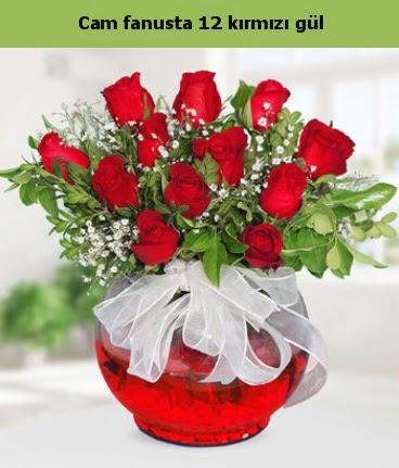 Cam içerisinde 12 adet kırmızı gül  Giresun online çiçekçi , çiçek siparişi