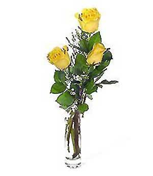 Giresun İnternetten çiçek siparişi  3 adet kalite cam yada mika vazo gül