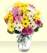 Giresun İnternetten çiçek siparişi  mevsim çiçekleri mika yada cam vazo