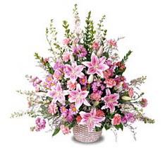 Giresun yurtiçi ve yurtdışı çiçek siparişi  Tanzim mevsim çiçeklerinden çiçek modeli