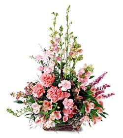 Giresun çiçek mağazası , çiçekçi adresleri  mevsim çiçeklerinden özel