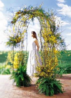 Giresun online çiçekçi , çiçek siparişi  güller ve mevsim çiçegi