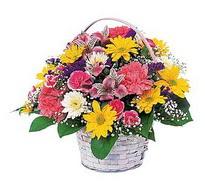 Giresun çiçek servisi , çiçekçi adresleri  mevsim çiçekleri sepeti özel