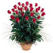 Giresun çiçek satışı  10 adet kirmizi gül cam yada mika vazo