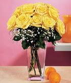 Giresun online çiçekçi , çiçek siparişi  9 adet sari güllerden cam yada mika vazo