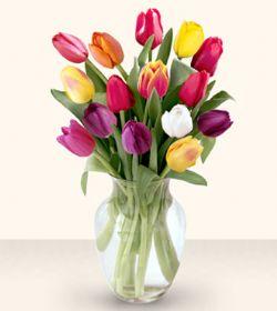 Giresun çiçek yolla , çiçek gönder , çiçekçi   13 adet cam yada mika vazoda laleler