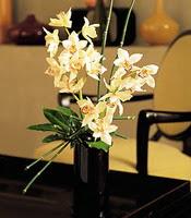 Giresun çiçek yolla , çiçek gönder , çiçekçi   cam yada mika vazo içerisinde dal orkide