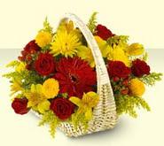 Giresun çiçek , çiçekçi , çiçekçilik  sepette mevsim çiçekleri