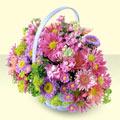 Giresun çiçek siparişi vermek  bir sepet dolusu kir çiçegi  Giresun uluslararası çiçek gönderme