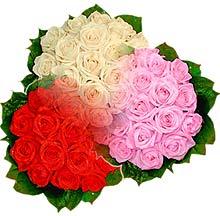 3 renkte gül seven sever   Giresun çiçek servisi , çiçekçi adresleri