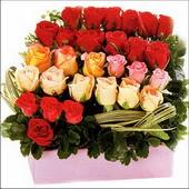 15 adet renkli gül ve cam   Giresun güvenli kaliteli hızlı çiçek