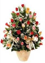 91 adet renkli gül aranjman   Giresun uluslararası çiçek gönderme