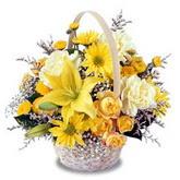 sadece sari çiçek sepeti   Giresun uluslararası çiçek gönderme