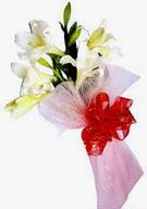 Giresun çiçek servisi , çiçekçi adresleri  ince vazoda gerbera ve ayi