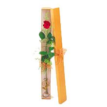 ince  kutuda  1  gül   Giresun 14 şubat sevgililer günü çiçek