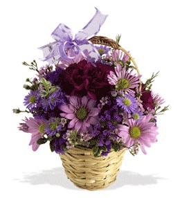 Giresun çiçek satışı  sepet içerisinde krizantem çiçekleri