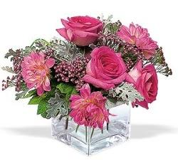 Giresun çiçekçi telefonları  cam içerisinde 5 gül 7 gerbera çiçegi