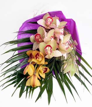 Giresun çiçekçi telefonları  1 adet dal orkide buket halinde sunulmakta