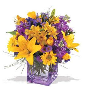 Giresun internetten çiçek satışı  cam içerisinde kir çiçekleri demeti