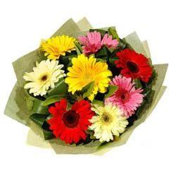 9 adet karisik gerbera demeti  Giresun internetten çiçek satışı