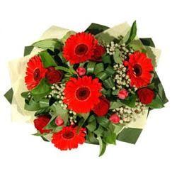 Giresun çiçek mağazası , çiçekçi adresleri   5 adet kirmizi gül 5 adet gerbera demeti
