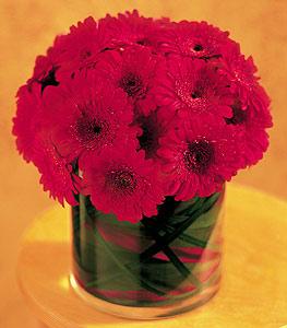 Giresun çiçek mağazası , çiçekçi adresleri  23 adet gerbera çiçegi sade ve sik cam içerisinde