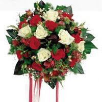 Giresun çiçek mağazası , çiçekçi adresleri  6 adet kirmizi 6 adet beyaz ve kir çiçekleri buket