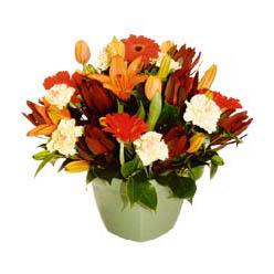 mevsim çiçeklerinden karma aranjman  Giresun cicek , cicekci