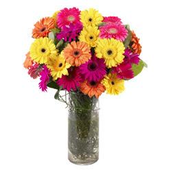 KARISIK GERBERALARDAN CAM VAZO TANZIMI  Giresun internetten çiçek siparişi