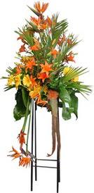 Giresun yurtiçi ve yurtdışı çiçek siparişi  perförje tanzimi dügün nikah ve açilislara