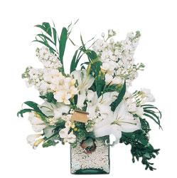 Giresun İnternetten çiçek siparişi  sadece beyazlardan olusmus mevsim cam yada mika tanzim