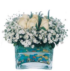 Giresun güvenli kaliteli hızlı çiçek  mika yada cam içerisinde 7 adet beyaz gül