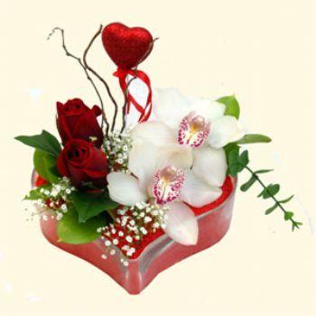 Giresun hediye çiçek yolla  1 kandil orkide 5 adet kirmizi gül mika kalp