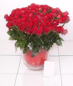 Giresun çiçek gönderme  101 adet kirmizi gül