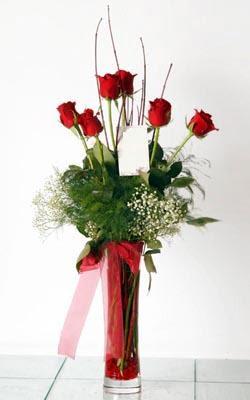 Giresun çiçekçi telefonları  6 adet kirmizi gül ve cam yada mika vazo