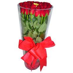 Giresun çiçekçi mağazası  12 adet kirmizi gül cam yada mika vazo tanzim