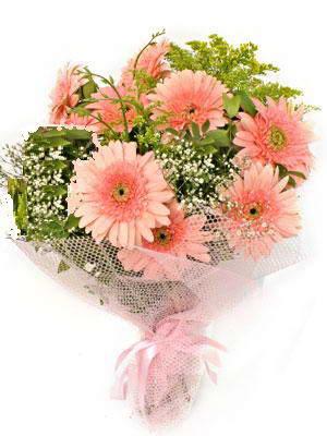 Giresun çiçek online çiçek siparişi  11 adet gerbera çiçegi buketi