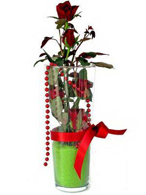 Giresun çiçek yolla  Cam yada mika içerisinde 9 adet kirmizi gül - sevdiklerinize özel