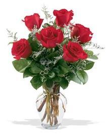 Giresun uluslararası çiçek gönderme  7 adet kirmizi gül cam yada mika vazoda sevenlere