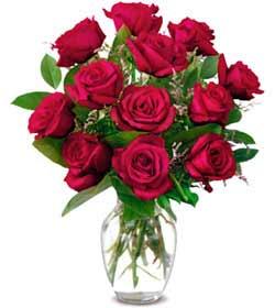 Giresun çiçek yolla  1 düzine kirmizi gül sevenlere özel vazo gülleri