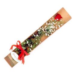 Giresun çiçek servisi , çiçekçi adresleri  Kutuda tek 1 adet kirmizi gül çiçegi