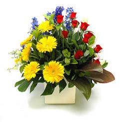 Giresun çiçek yolla  9 adet gül ve kir çiçekleri cam yada mika vazoda