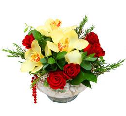 Giresun anneler günü çiçek yolla  1 kandil kazablanka ve 5 adet kirmizi gül