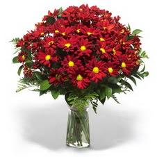 Giresun 14 şubat sevgililer günü çiçek  Kir çiçekleri cam yada mika vazo içinde