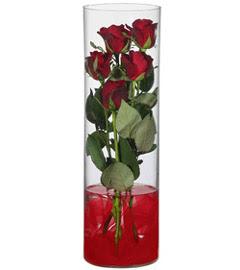 cam içerisinde 7 adet kirmizi gül  Giresun çiçek yolla , çiçek gönder , çiçekçi